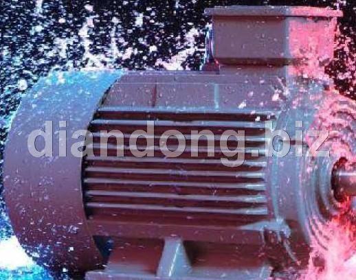 供应西门子1LG0 2极电机资料,选型技术参数