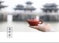 发手拉壶谢华大师赖通发茶壶,紫砂壶龙舟壶