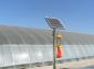 供应烟田太阳能杀虫灯、花卉太阳能杀虫灯、樱桃园太阳能杀虫灯、太阳能杀虫灯价格